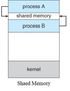 مدل پیاده سازی Shared Memory IPS